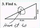 8 funniest exam answers that  some students give