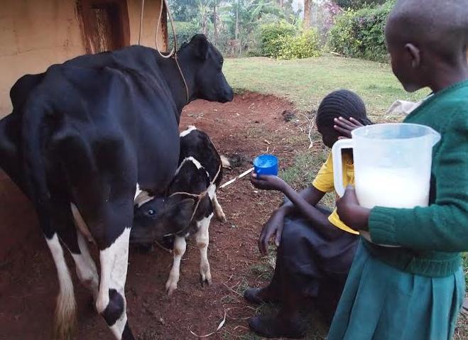hiv aids in schools kenya