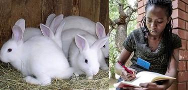 Laetitia Victoria Mukungu rabbit business