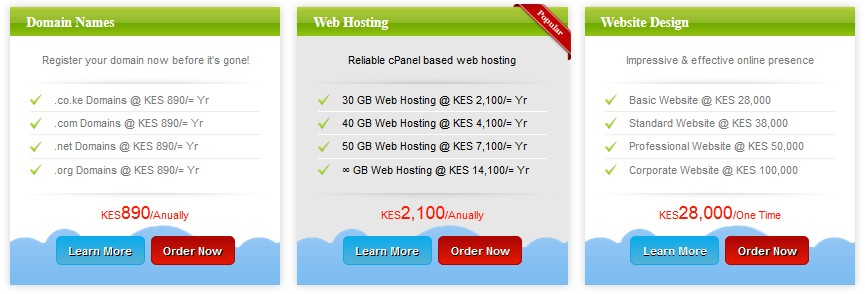 kenya web experts hosting