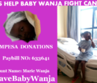 Marie Wanja donations