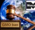 court bans gmo food kenya
