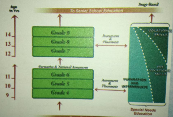 new curriculum in kenya senior school