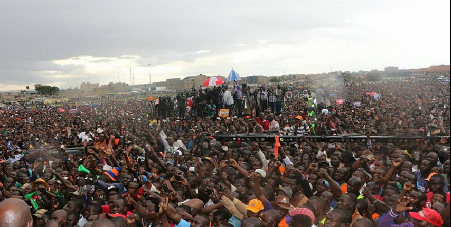 NASA in Jacaranda crowds