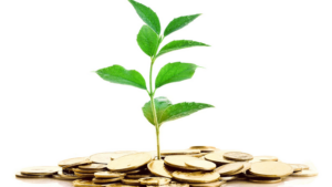 How to invest in Kenya, Agriculture, Real Estate, ICT, Stocks