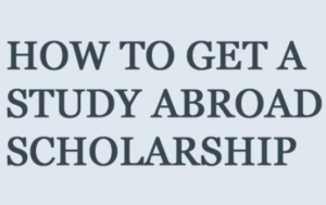 How to win a scholarship to study abroad while in campus