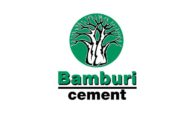 SWOT and PESTLE analysis of Bamburi Cement Limited