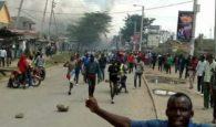 nasa jacaranda chaos 2