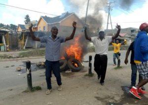 Jacaranda chaos