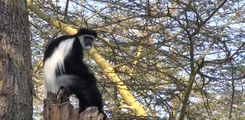 Best Holiday Destinations in Narok County, Where to visit