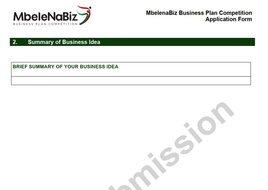 Summary of Mbele Na biz business idea