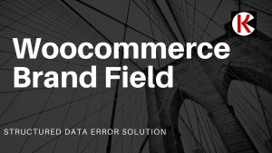 Woocommerce Brand Field Structured Data error solution